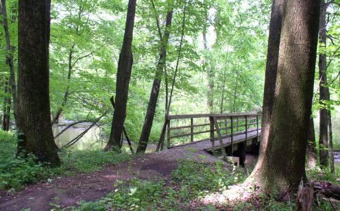 Wilderness Center